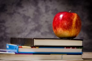 Why Apricot is sincerely looking forward to the new school year