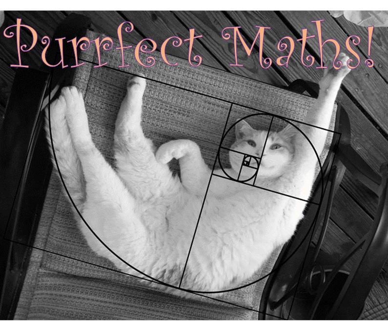 Purrfect Maths